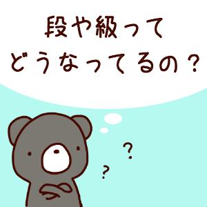 【囲碁入門】自分は何級なのか知りたい!その1:段位と級位の全体像